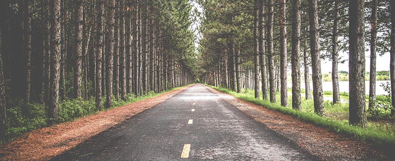 roadway-nicm