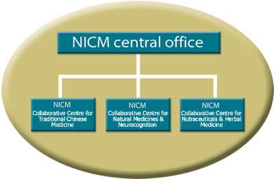 NICM_Collab_Centres_diag